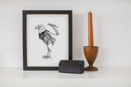 Cuadro Aguila con  marco