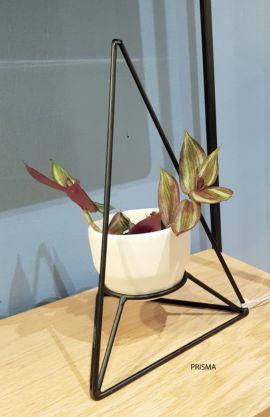 Flor 1 orquidea
