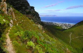 Frenkloof Guided Walks - Cape Town