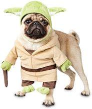 Traje de Yoda para Pumba