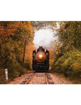 Paseo en tren