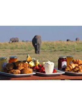 Desayuno con elefantes
