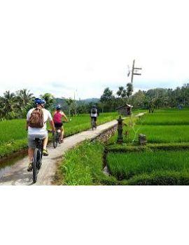 Tour en bicicleta en Ubud, Bali, Indonesia